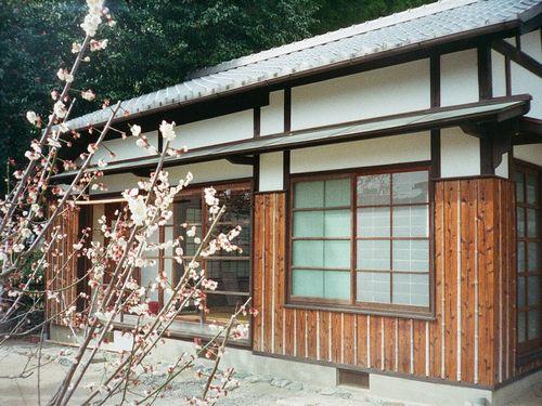 160_matsuyama066.JPG